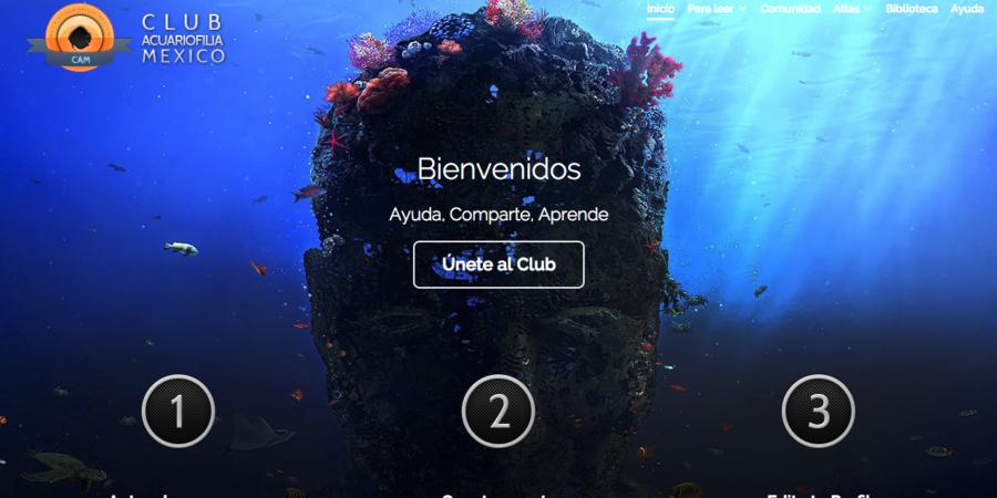 Club Acuariofilia México