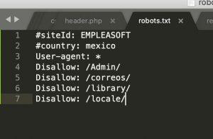 robotstxt 300x196 1